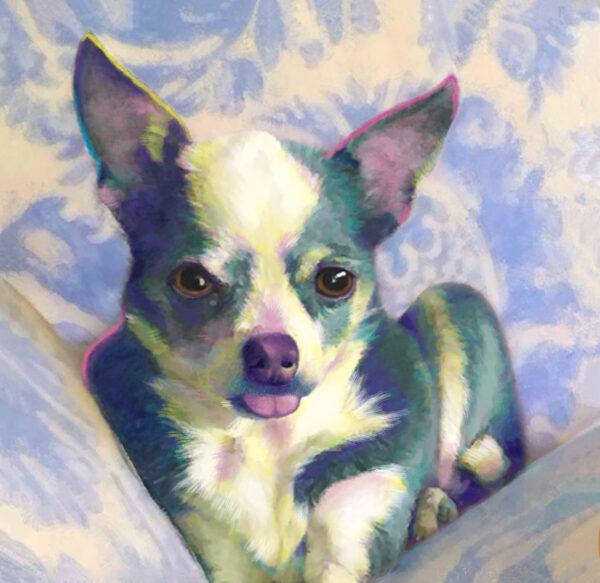 Chihuahua custom Portrait