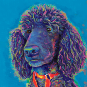 Poodle Custom Painting